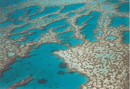 Here is a photo of the beautiful Great Barrier Reef I took on one of my Travel Nurse expeditions